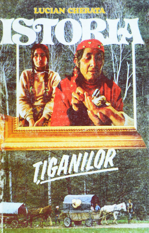 Istoria tiganilor - Lucian Cherata